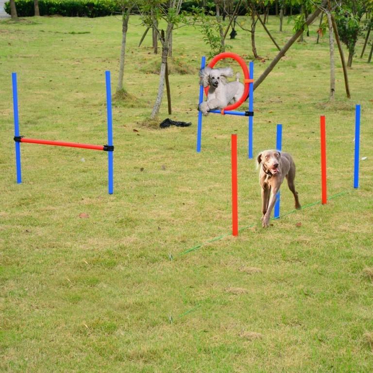 Agility překážky pro psy, sada 3 typy
